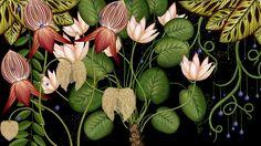 Botanicum. Viaje a través de la botánica con ilustraciones de Katie Scott