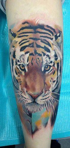 Videos y Fotos de Tatuajes de Tigres, Videos de Tatuajes de Tigres, Fotos de Tatuajes de Tigres