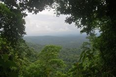 Darien National Park, Panama