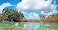 #muyil #laguna #siankaan #reservadelabiosfera #remansodepaz #relaxtime #landscape_captures #landscaping #landscapephotography #naturephotography #flotando #om #naturelife #estoesvida #momentos #sensaciones #paisajes #natura #mirandoalcielo