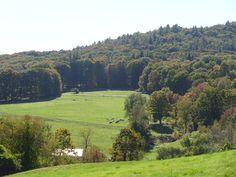 Green fields, southern VT