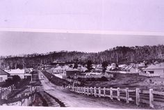 Newcastle Town, John Turner, Local Studies, Tourist Info, Old Maps, Central Coast, My Town, Historian, Postcards