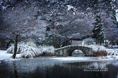 Winter wonderland in Queenstown