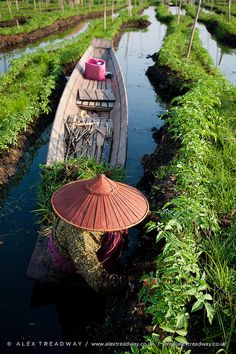 Floating gardens . Myanmar
