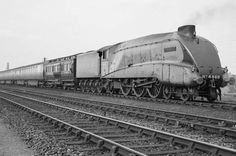 National Railway Museum: Paul Routledge joins in celebrations for anniversary of 4468 Mallard breaking world speed record Mallard Train, National Railway Museum, Steam Railway, New Mods, Steam Engine, Steam Locomotive, Old Photos, Past, Around The Worlds
