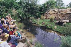 Gibbon Anlage - Zoo Hannover, Deutschland