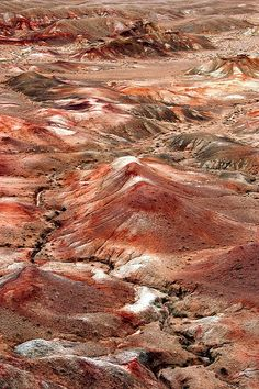 "Gobi Desert 戈壁 蒙语。沙漠的一种,地面主要由砾石构成,植物稀少。清 纪昀 《阅微草堂笔记·如是我闻二》:"" 嘉峪关 外有戈壁,径一百二十里,皆积沙无寸土。"" ""亦称"" 戈壁滩 ""。"