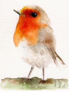 ideas for robin bird watercolor christmas cards Watercolor Bird, Watercolor Animals, Watercolor Paintings, Watercolors, Tattoo Watercolor, Watercolor Portraits, Watercolor Landscape, Abstract Paintings, Art Paintings