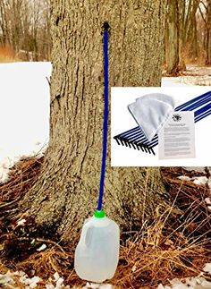 Maple Syrup Tree Tapping Kit - 10 Taps + Drop Line Tubes + Maple Sap Filters - Includes Instructions - List for Home and Garden Products Maple Syrup Tree, Sugar Bush, Apple Farm, Foot Drop, Recipe Cards, Filters, Tube, Pure Products