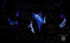Zed by Cirque du Soleil in Tokyo, Japan