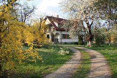 Hilde's Residence, traditii bucovinene in Gura Humorului Tourist Places, Romania, Barcelona, Country Roads, Exterior, Mountains, Traditional, Places, Barcelona Spain