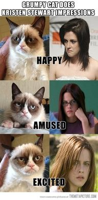 "Grumpy Cat Impressions…"" data-componentType=""MODAL_PIN"