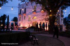 Laguna Gloria wedding. Festoon lighting. Outdoor lighting. Pink lighting. Photos by Sherwin Field at Field Photography.