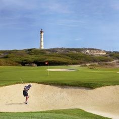 Prepare seus tacos, o Torneio Internacional de Golfe Pro-Am de Aruba acontece de 26 a 28 de agosto na ilha feliz. Uma competição para…