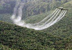 As armas Químicas do Brasil: Os Agrotóxicos.