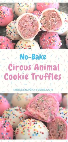 No-Bake Circus Animal Cookie Truffles No-Bake Circus Animal Cookie Truffles Making sweet treats doesn't need to turn your kitchen into a zoo. All you need are 5 simple ingredients to create these adorable No-Bake Circus Animal Cookie Truffles. Dessert Party, Bon Dessert, Snacks Für Party, Party Fun, Dessert Table, Appetizer Dessert, Party Sweets, Farm Party, Dessert Food