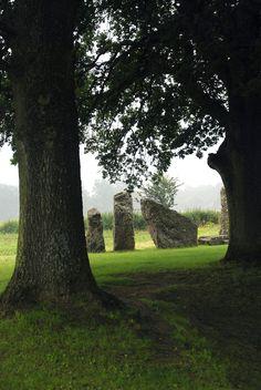 Megaliths in Weris, Belgium.Photos by Peter Haentjens