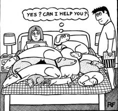OK, so we only had the standard Dachshund, the Westie & the Great Dane...but I know how this cartoon feels!