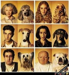 dogs and owners sometimes look alike-too funny! Funny Dogs, Funny Animals, Cute Animals, Customer Day, Foto Fashion, Haha, Funny Dog Pictures, Look Alike, Dog Friends