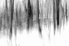 Steven Huszar: Artist Website