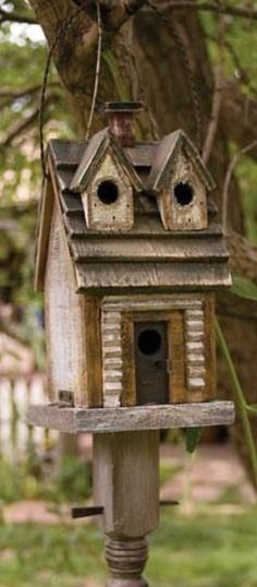 Two story for mote bird family's.