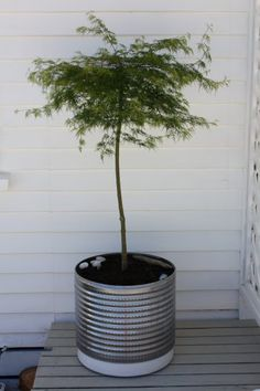 washing machine drum recycled and repurposed as planter by Woodology