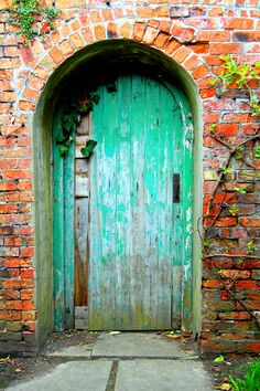 The color contrasts are gorgeous on this door/brick wall.