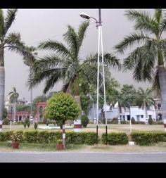 Aligarh Muslim University, Wind Turbine