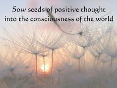 Sow seeds of positive thought into the consciousness of the world