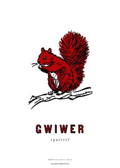 fforest cymraeg prints are a series of prints illustrating the welsh words that are important to us at fforest. 'gwiwer' squirrel Printed locally o.
