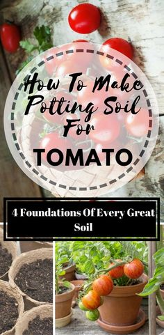 How To Make Potting Soil For Tomatoes - Easy To Do But Still Needs Some Guidelines Whenever I was making soil mixture, I had to take into consideration four factors and to balance them accordingly. Fall Vegetables, Organic Vegetables, Growing Vegetables, Organic Soil, Organic Gardening Tips, Urban Gardening, Hydroponic Gardening, Container Gardening, Vegetable Gardening
