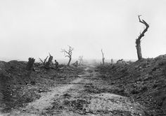 The road to Guillemont viewed from Waterlot Farm during the Battle of the Somme, 11 September Brooks Ernest (Lt) World War One, First World, Schlacht An Der Somme, Battle Of The Somme, 11. September, History Of Photography, War Photography, Man Of War, British Soldier