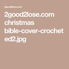 2good2lose.com christmas bible-cover-crocheted2.jpg