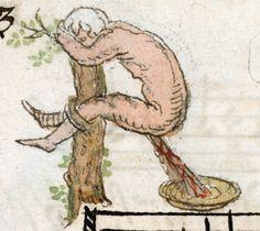 20 Medicin Ideas Medieval Art Medieval Middle Ages