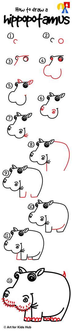 How To Draw A Hippo - Art For Kids Hub -