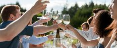Chardonnay is one of our favorite white wines and it's perfect for dinner. Explore some of the best labels that can easily become your everyday wine. Wine Festival, Food Festival, Festival Party, Engagement Party Games, Wedding Games, Wedding Engagement, Chardonnay Wine, Cabernet Sauvignon, Outdoor Dinner Parties