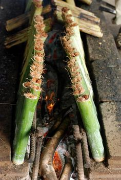 Thailand - Tender bamboo shoots are cut into segments and stuffed with a mixture of sticky rice, coconut milk, and red beans. The ends of the shoots are stopped up with hay, and then the shoots are left to cook in front of an open fire. As the shoots brown, the rice inside cooks up.