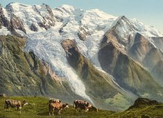 Vallée de Chamonix. Vue prise de Planpraz.    #Europe #France_Nouveautés #France_Régions_touristiques
