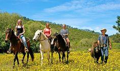 Ferienglück auf dem Pferderücken #reiten #pferd #berge #familienurlaub #westernreiten #ferien #travel #horseriding #horse #ausreiten travelwithkids #vamosreisen