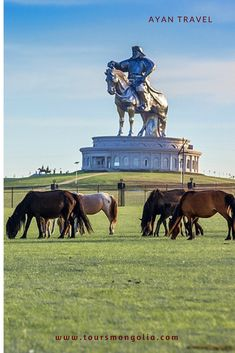 Things to do in Ulaanbaatar Mongolia.