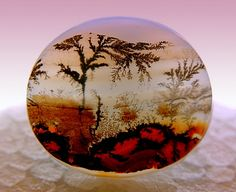 Dendritic Agate ~ Amazing natural scene within the stone Minerals And Gemstones, Rocks And Minerals, Dendritic Agate, Agate Stone, Moss Agate, Beautiful Rocks, Mineral Stone, Rocks And Gems, Stones And Crystals