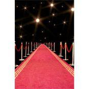 red carpet fun....