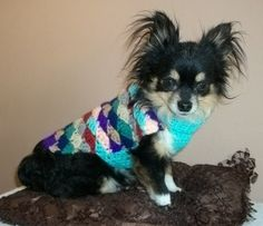 Small Breed Crochet Dog or Cat Sweater by copperllamastudio, $3.00