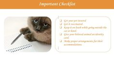 Important checklist before traveling with Pet on a Road Trip