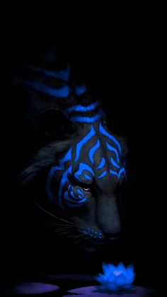 Tattoos Discover Tiger Blue Wallpaper by - - Free on ZEDGE Mythical Creatures Art Cute Fantasy Creatures Tiger Wallpaper Animal Wallpaper Dark Fantasy Art Fantasy Artwork Tiger Pictures Tiger Art Lion Art Wild Animal Wallpaper, Tiger Wallpaper, Cute Fantasy Creatures, Mythical Creatures Art, Big Cats Art, Cat Art, Dark Fantasy Art, Fantasy Artwork, Tiger Pictures