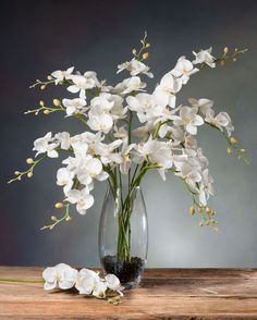 The orchid artificial flower arrangements Photo. You Can save This orchid artificial flower arrangements Photo TITLE: Phalaenopsis Orchid Si. Orchid Flower Arrangements, Orchid Centerpieces, Artificial Floral Arrangements, Flower Vases, Fake Flowers, Amazing Flowers, Silk Flowers, White Flowers, Artificial Plants And Trees
