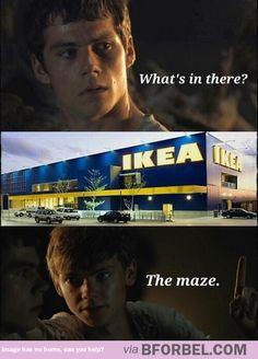 The maze professionals