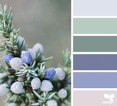 Explore Design Seeds color palettes by collection. Green Colour Palette, Color Palate, Palette Verte, Palette Design, Exterior House Colors, Gray Exterior, Exterior Design, Color Stories, Color Swatches