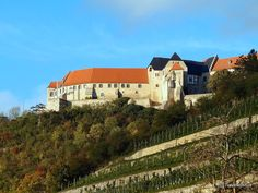 Neuenburg Castle high over Freyburg (Unstrut), Germany Saxony Anhalt, Rhineland Palatinate, Lower Saxony, North Rhine Westphalia, Germany Castles, Museums, Travel Destinations, Europe, Wine