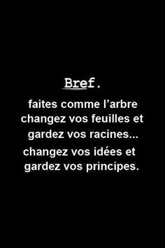 Humor & quotes QUOTATION - Image : As the quote says - Description Faire l'arbre Words Quotes, Life Quotes, Sayings, Humor Quotes, Positiv Quotes, Think, French Quotes, Some Words, Positive Attitude
